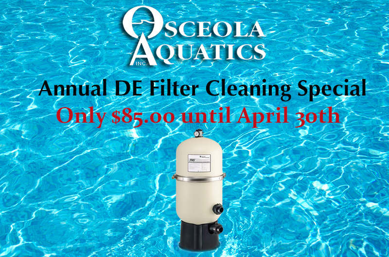 Annual DE Filter Cleaning Special